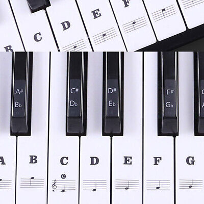 1Set Removable Piano Keyboard Laminted Stickers for 88/61/54/49 Key Transparent