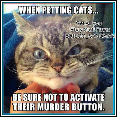Fridge Fun Refrigerator Magnet DON'T ACTIVATE THE CAT MURDER BUTTON Funny Meme