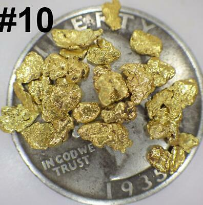 GOLD NUGGETS 2+ GRAMS Natural Placer Alaska Natural #10 DW Creek High Purity