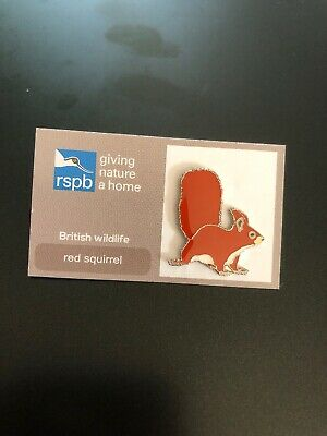 RSPB Pin Badge - Giving Nature A Home - Red Squirrel.