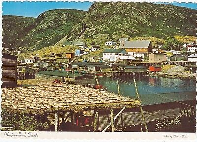 Drying Cod along Waterfront PETTY HARBOUR Newfoundland Canada Tooton's Postcard