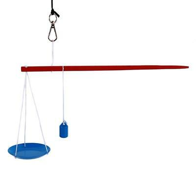 Kids Children Balance Beam Weighing Scale Science Experiment Educational Toys LA