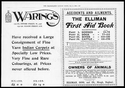 1899 Antique Print - ADVERTISING Ellimans First Aid Book Warings (28)
