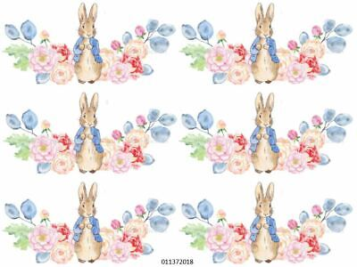 PeTeR RaBBiT FLoRaL SWaGs NuRSeRY TRansFeRs ShaBby WaTerSLiDe DeCALs