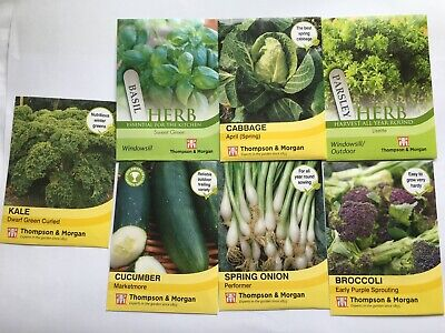 VEGETABLE SEEDS MIXED  LOT x 7 cabbage Basil Kale Broccoli Cucumber Onion new