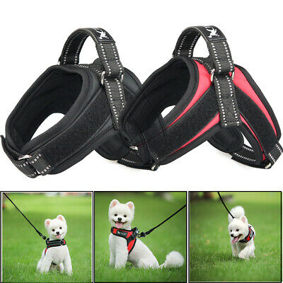 Non Pull Dog Harness Reflective Strong Adjustable Soft Padded Vest For Small Pet