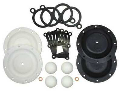 SANDPIPER 476.166.654 Repair Kit,PTFE,Fluid,For 3/4 In Pump
