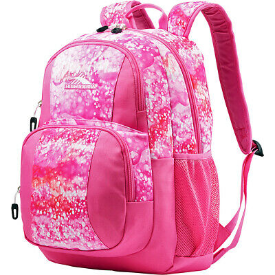 High Sierra Pinova Backpack - eBags Exclusive 5 Colors Everyday Backpack NEW