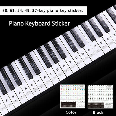 Keyboard Sticker Piano Stave Stickers Pianos Decoration Music Label Note