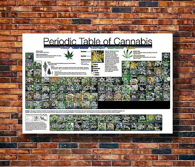 X580 Hot Fabric Poster Periodic Table of Cannabis 36x24 30x20