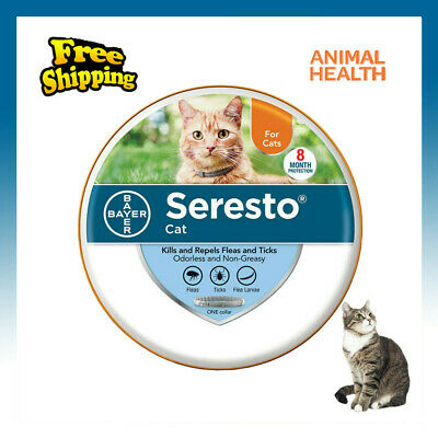 Bayer Seresto Flea Collar for Cats 8 Months and Tick Prevention - Free Shipping