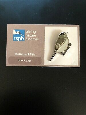 RSPB pin badge blackcap (British wildlife)