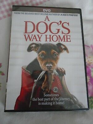 A Dog's Way Home (DVD, 2019) With Special Features Region 1