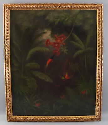 Antique Hummingbird Butterfly Botanical Tropical Amazon Rainforest Oil Painting