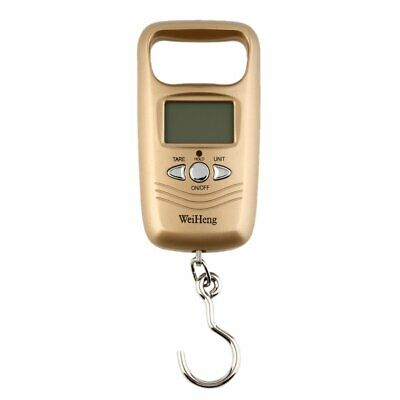 Portable 50kg/5g LCD Digital Scale Fish Hanging Luggage Weight Tool with Hook