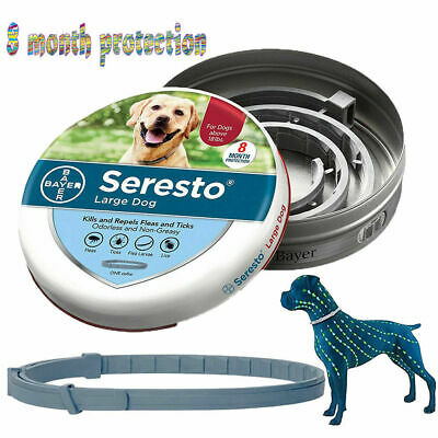 Bayer Seresto Collar Anti Flea & Tick Collar for Large Dog Pet Over 18 lbs(8kg)