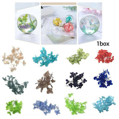 molds Handmade Filling Materials Resin filler Dry Flower Crystal uv accessorie