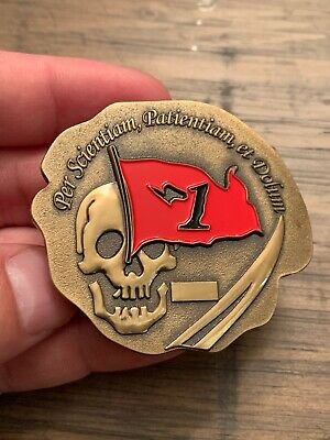Limited Mint Odd Shaped US Navy Seal Team 1 Challenge Coin RARE Find