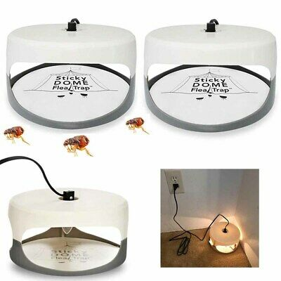 UK NEW Sticky Dome Flea Insect Trap Lamp With 2 Stickers + 2 Light Bulbs UK Plug