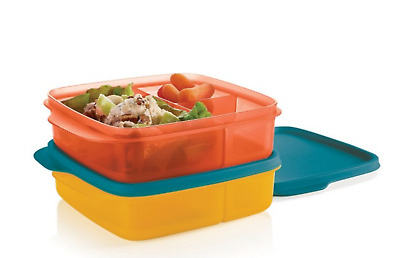 Tupperware New Set of 2 Lunch-It Divided Containers Square Set