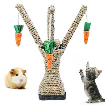 Pet Hamster Cat  Climbing Carrot Tree Tower Shelf Scratching Post Chewing Toy