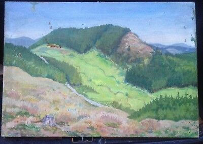 Oil Painting Eifel ?? Damaged to the Restore Hill Mountain° um 1920 Unsign