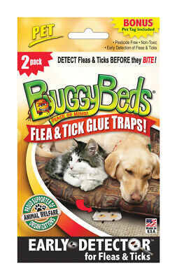 Buggy Beds  Bed Bug Detector  2 pk