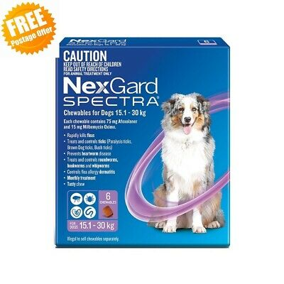 For Dogs NexGard Spectra Large Purple Chewables 15.1-30kg 3/6 Pack