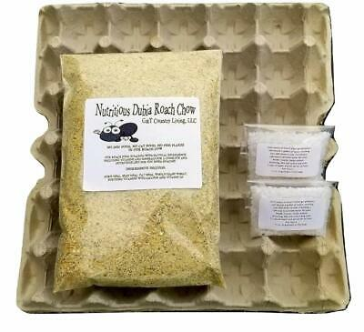 Cricket  Dubia Roach Colony Starter Kit - Includes 8 Egg Flats, Premium Dubia R