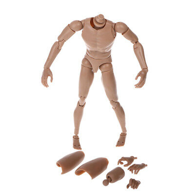Narrow Shoulder 1:6 Scale Action Figure Nude Male Body Fit HOT Toys TTM19  TTM18