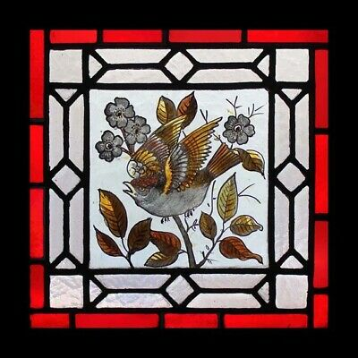 Pretty Victorian Painted Bird In Foliage Antique English Stained Glass Window