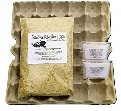 Cricket & Dubia Roach Colony Starter Includes 8 Egg Flats 2 Water Gel Granules