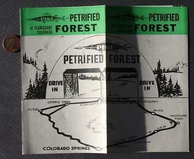 1940-50s Era Florissant,Colorado Petrified Forest Drive-In illustrated brochure*