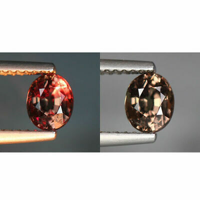 NATURAL DEEP RED GARNET UNHEATED SMALL ROUGH BITS 10.0 CT 7.5 x 5 to 13 x 9 mm