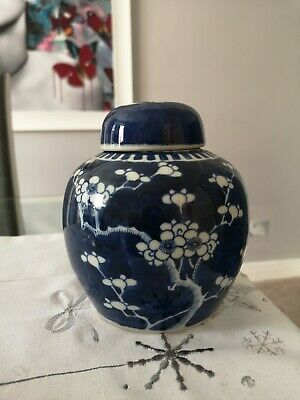 Fine 19th Century Antique Chinese Prunas Jar And Cover.. Kangxi Mark