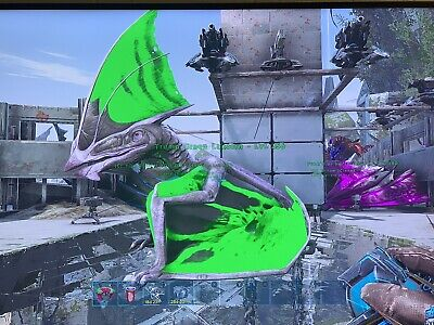 Ark Xbox One Official Pvp – Meta Morphoz