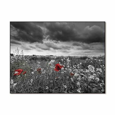 Painting Picture Nordic Poster Canvas  Home Decor Art Prints Flower Natural