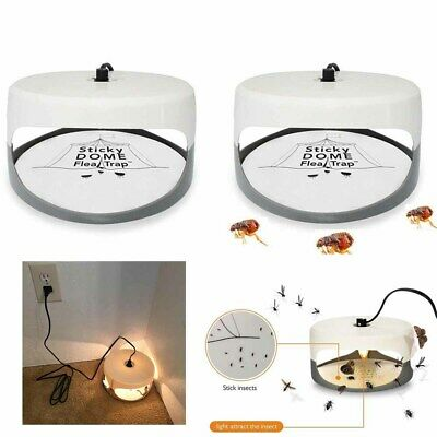 For Sticky Dome Flea Insect Trap Lamp W/ 2 Stickers + 2 Lights Bulbs UK Plug