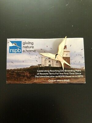 Roseate Tern RSPB Pin Badge - Coquet Island 2015 Special GNAH - Wildlife Charity