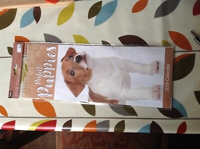 Perfect Puppies 2019 Calender In Unused Complete Clean Condition