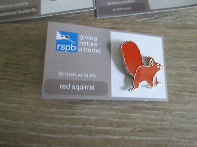 Red Squirrel -  Rspb Enamel Pin Badge On Its Presentation Card - New