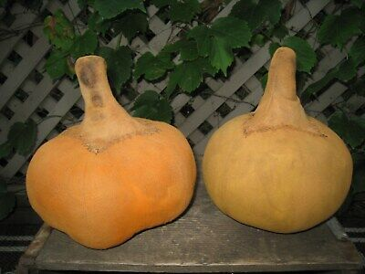Primitive Pair Fall Harvest Pumpkins~ Old-Early Grungy Look~ Folk Art Halloween~