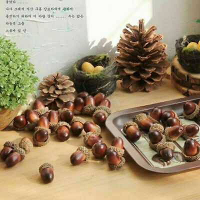 Assorted Natural Acorns With Caps, Fall Decor,Thanksgiving, Craft Supplies 10PCS