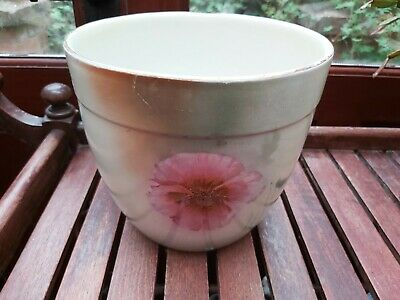 Edwardian Art Nouveau Poppy Royal Wilkinson Jardiniere Planter Plant Pot 20cm