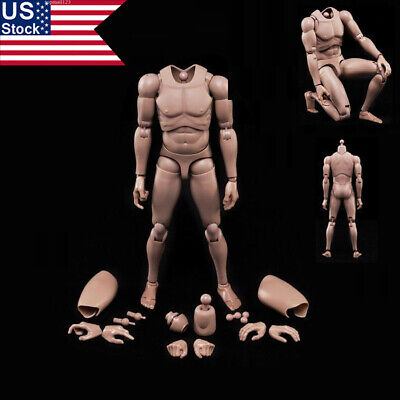 "1//6 Scale B005 Male Narrow Shoulder Nude Muscle Body F 12/"" Figure In Stock"