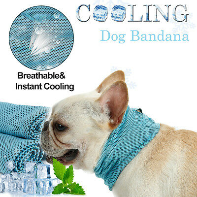 S/M/L Pet Dog Cat Summer Instant Ice Cooling Bandana Neck Scarf Collar