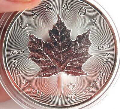.2014 Canada $5 1Oz  .999% Silver Proof Coin In Capsule.