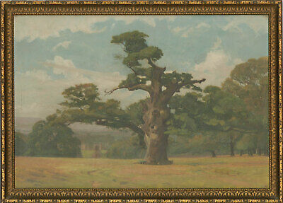 Fine Mid 20th Century Oil - Gnarled Oak Tree