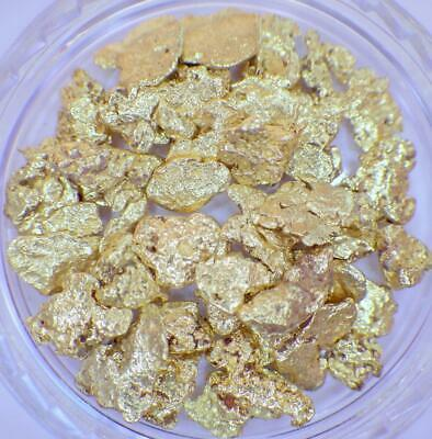GOLD NUGGETS 7+ GRAMS Alaskan Natural Placer #8 Screen Jewelers Purity FREE SHIP