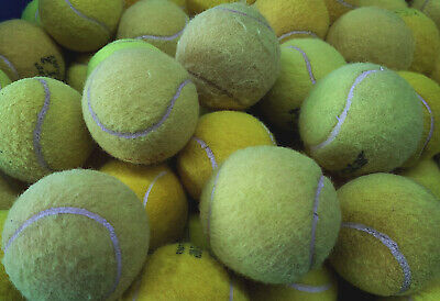30 Used Tennis Balls For Dogs. Machine Washed To Remove Chemicals That Harm Dogs